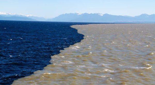 Viral Air Laut Terbelah Di Selat Suramadu, Ini Kata Pengamat