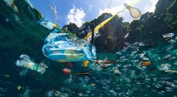 Dua Ilmuwan Ciptakan Bakteri Baru yang Dapat Memakan Sampah Plastik Di Lautan