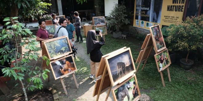 STFJ dan PFI Medan Gelar Diskusi Fotografi Lingkungan bersama NGO