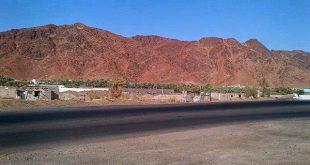 Kisah Ibnu Umar yang Melewatkan Pahala Bergunung-gunung